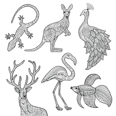 Vector hand drawn illustrations of animals. Lizard, kangaroo, peacock, deer, flamingo, betta fish. Adult coloring page. Stock Illustratie