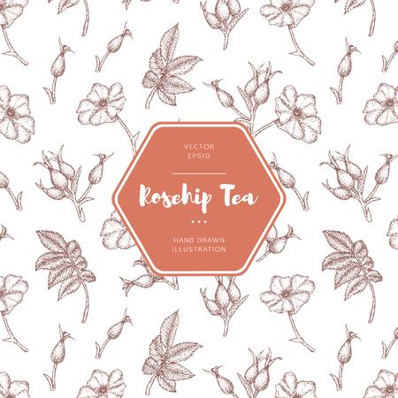 Vektor Hand gezeichnete Hagebutten Tee Emblem. Beinhaltet ein nahtloses Muster.