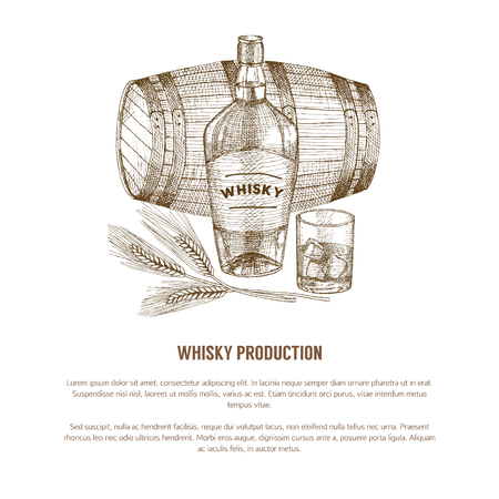 Vector whisky production template, concept. Vintage hand drawn elements.
