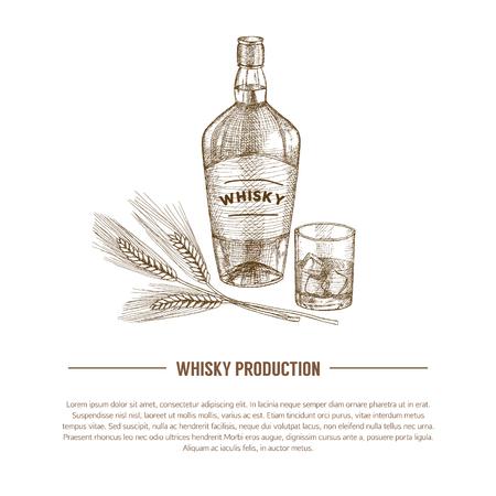 Plantilla de producción de whisky de vector, folleto, concepto. Elementos dibujados a mano vintage. Ilustración de vector