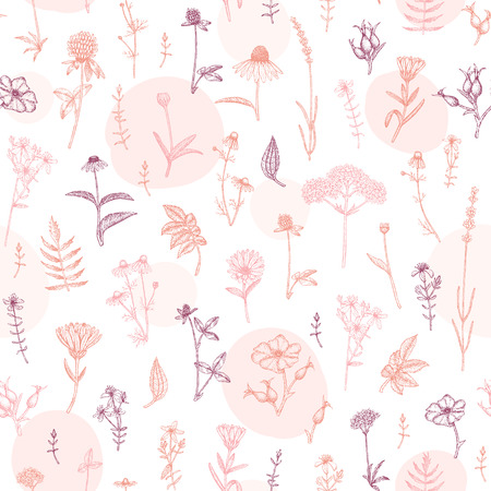 Vector hand drawn medicinal plant seamless pattern. Sketch, drawing, illustration of echinacea, calendula, clover, lavender, chamomile, dog rose, valerian, st. Johns Wort plants. Illustration
