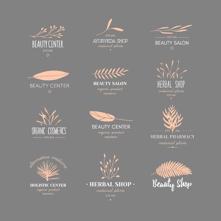 Bellezza disegnata a mano alla moda di vettore, cosmetici biologici, medicina alternativa, loghi omeopatici, distintivi, emblemi, logotipi. Grande collezione di piante eleganti, loghi floreali.