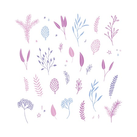 Vector elegant cute Christmas floral big collection. Feminine flower graphic design elements. Leaves, twigs and branches.