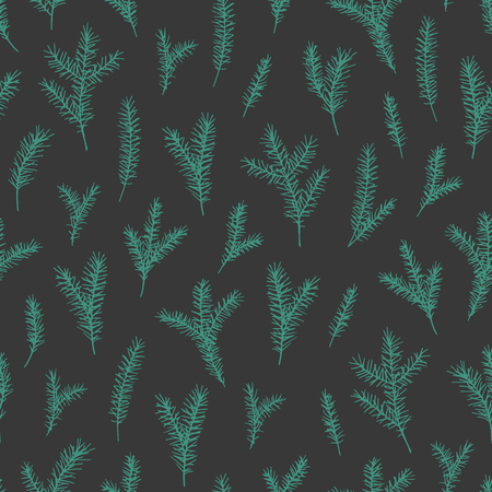 Vector hand drawn elegant minimalist spruce