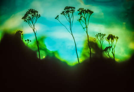 inexplicable: Artistic background with plants on liquid blue and green Stock Photo
