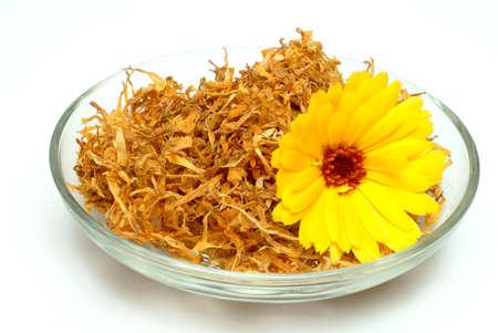 medicinal plant: Medicinal plant Calendula officinalis, blossom ond dried blossoms