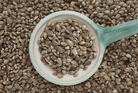 nuts: Hemp seeds or hemp nuts are a high-protein food source Stock Photo