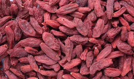 botanical medicine: Goji berries, a fruit berry and medicinal plant Stock Photo