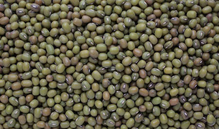 mung: Mung bean, Vigna radiata, also Jerusalem bean, mung dal