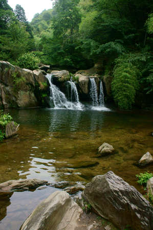 Deep forest Waterfall                                  photo