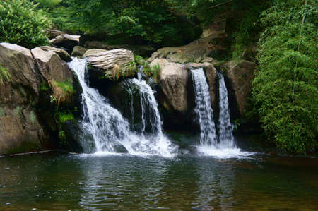 waterfall in forest: Deep forest Waterfall