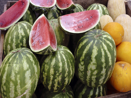 plenty of watermelons and cantaloupes for sale Stock Photo