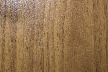 Different species of wood, different textures and colors Stock Photo