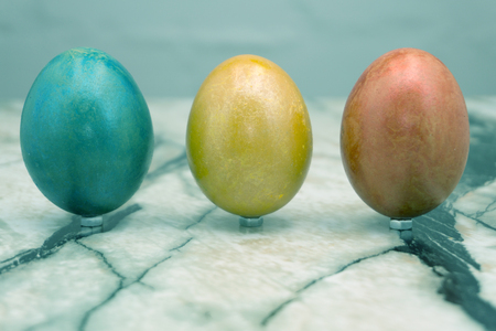 easter theme - easter eggs on salad green background
