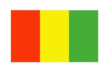 Guinea flag on canvas. Patriotic background. National flag of Guinea