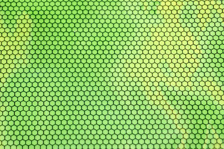 honeycomb background cells apiculture abstract cute sugar