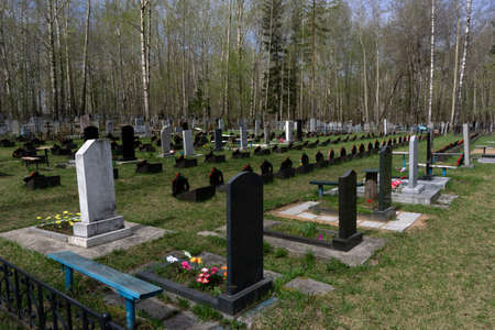 cemetery with tombstones on the background of the forest