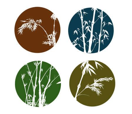 lucky bamboo: Bamboo Collection
