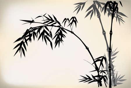 guadua: Bamb? Vectores
