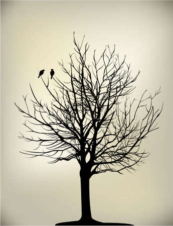 birds silhouette: 2 birds on tree