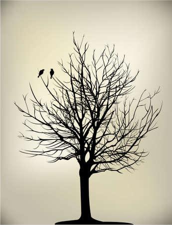 2 pájaros en el árbol