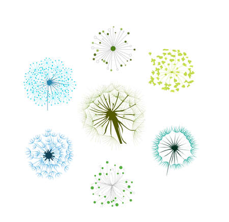 Dandelion Collection Vector
