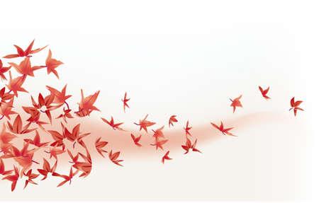 hojas de maple: las hojas de arce