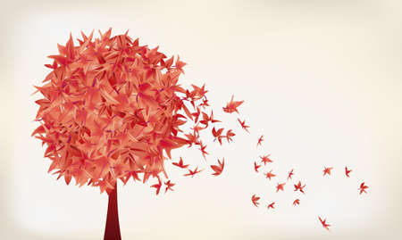autumn trees: maple leaves Illustration