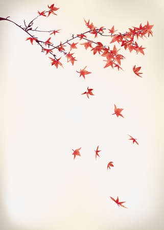 japanese maple: maple leaves Illustration