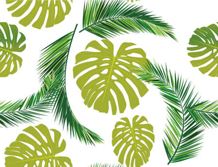 monstera: summer leaves
