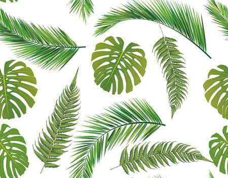fruta tropical: Fondo de hojas