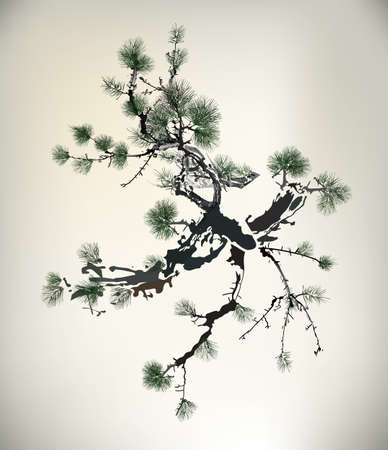 japanese painting: Ink style Pine Tree  Illustration