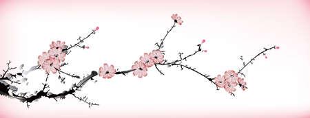 fleur de cerisier: peinture de fleurs Illustration