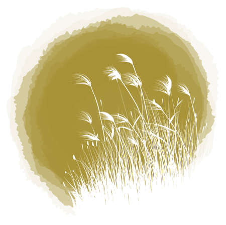 canne: goccia di inchiostro reed