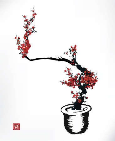 illustration and painting: cherry bolssom pot, ink painting Illustration