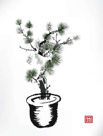 pot leaf: Ink style Pine Tree in pot Illustration