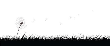 hand drawn: Grass and dandelion