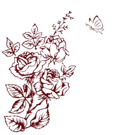 red rose background: rose sketch