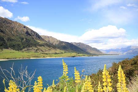 newzealand: lake hawea