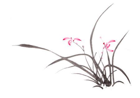 Dessin d'encre d'orchidée Banque d'images - 55068317
