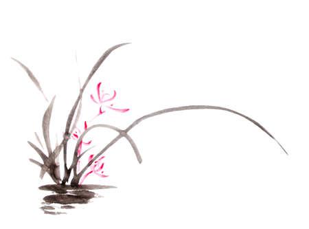 encre: dessin d'encre d'orchidée Banque d'images