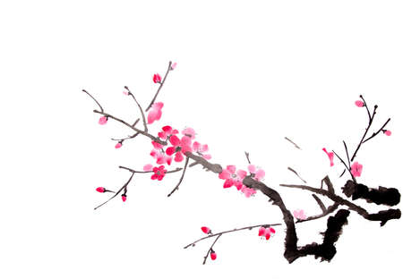 white blossom: cherry painting