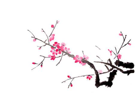 cherry schilderij Stockfoto