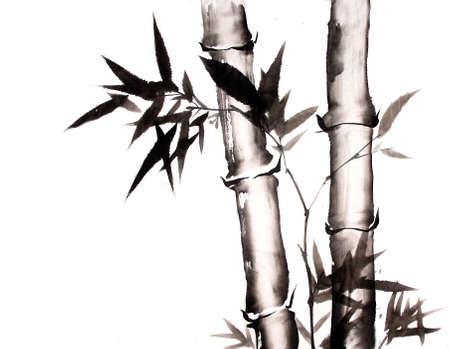 Bambus Tuschemalerei Hand gezeichnet Standard-Bild - 55542506