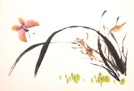 orchid isolated: ink orchid drawing