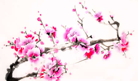 chinese watercolor: Chinese watercolor cherry painting Stock Photo