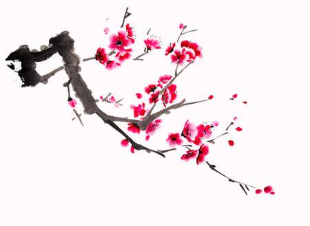 Peinture de cerisier d'aquarelle chinoise Banque d'images - 56021328