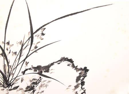 蘭 [インク描画