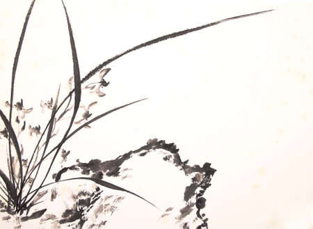 ink orchid drawing