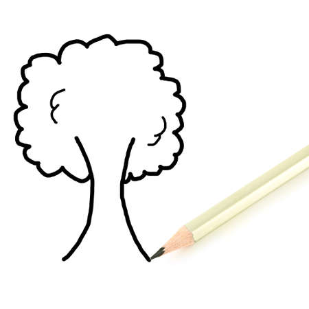 Pencil writing tree isolated on white background  Stock Photo - 12695500